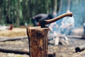 Risiko bei Holzarbeiten
